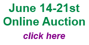 June 2015 Auction